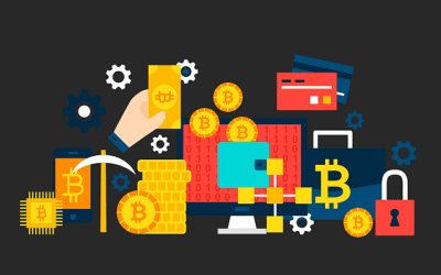 Wallet für Kryptowährung: Diese Alternativen sind empfehlenswert
